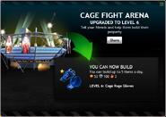 CageFightArenaLevel6