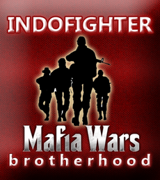 Indofighter