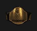 Mw tournament Belt middle