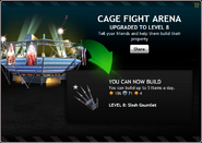 CageFightArenaLevel8