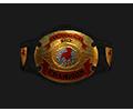 Mw tournament Belt bantam