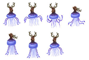 New Horse-faced Jellyfish