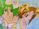 Wedding Peach Angel Lily and Angel Daisy using the Bridal Dress Change7