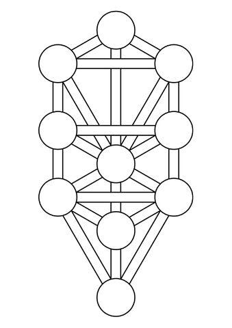 File:Tree-of-Life-Blank.jpg