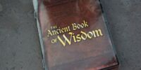The Ancient Book of Wisdom