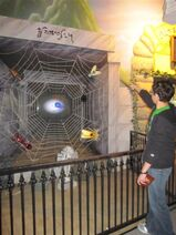 Spider-Web-Medium
