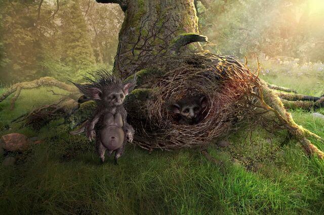 File:Hedgehogfairy 4.jpg