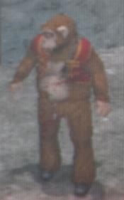 File:Monkey Outfit.jpg