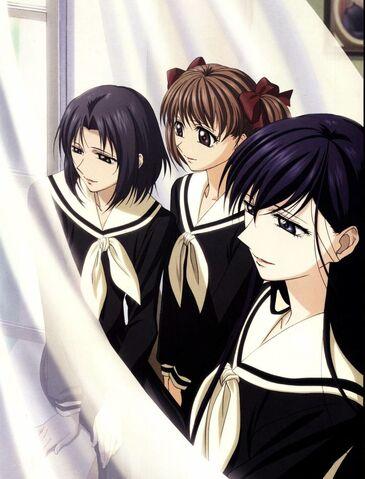 File:Chinensis Sisters 2.jpg