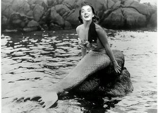 Sea watewr