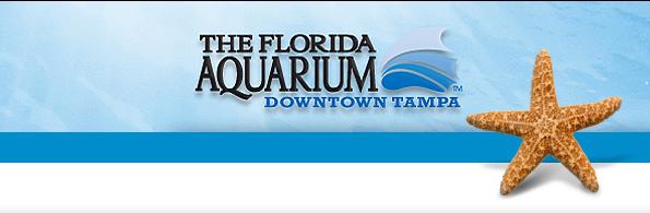 File:Fl-aquarium.jpg