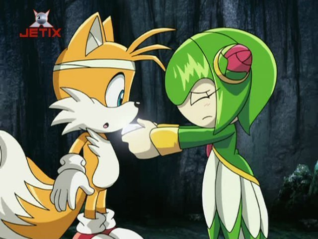 File:Tails-and-Cosmo-tails-and-cosmo-prower-14216777-640-480.jpg