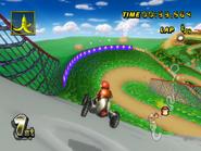 DK Mountain - Gap Turn - Mario Kart Wii