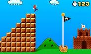Flagpole (Super Mario 3D Land)