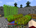 Thumbnail for version as of 22:27, January 18, 2014