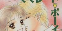 Marmalade Boy (novels)