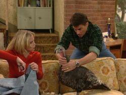 MWC episode =A Bundy Thanksgiving - Jefferson trying to trap Kelly's pet turkey Hank