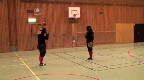 Martial Challenge Roland Warzecha vs Mikkel Mønsted