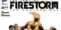 Fury of Firestorm: The Nuclear Men Vol 1 20