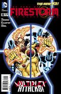 Fury of Firestorm Vol 1 18