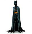 Batgirl Cassandra Cain 0081