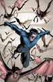 Nightwing 0009