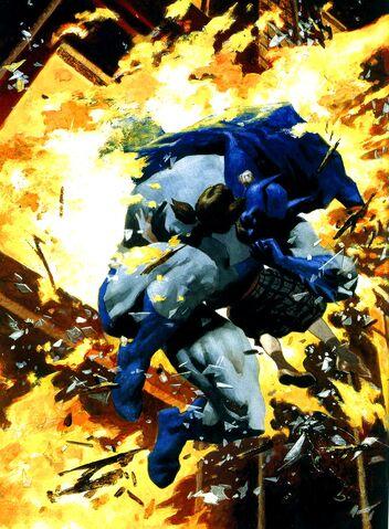 File:Batman 0258.jpg