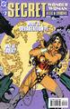 Wonder Woman Secret Files and Origins 2