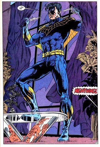 File:Nightwing 0028.jpg
