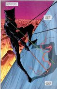 Catwoman III New Earth 002