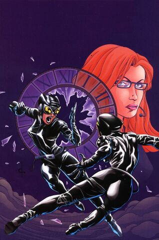 File:Birds of Prey Catwoman Oracle Vol 1 1 Textless.jpg