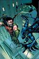 Robin Tim Drake 0061