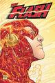 Flash Wally West 0014