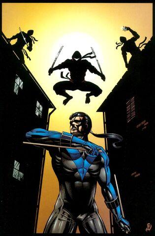 File:Nightwing 0015.jpg