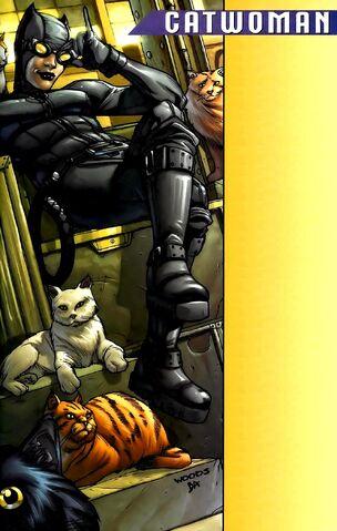 File:Catwoman 0057.jpg