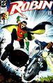 Robin v.1 3