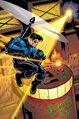 Nightwing 0030