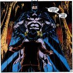 Batman reveals himself