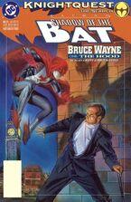 Batman Shadow of the Bat 21
