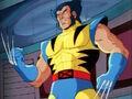 Wolverine Logan.jpg