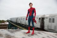 Spider-Man Peter unmasked