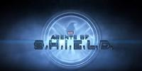 Agents of S.H.I.E.L.D./Trivia