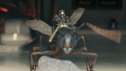 Ant-Man screenshot 4