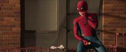 Spider-Man - Churro (Homecoming)