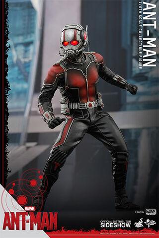 File:Ant-Man Hot Toys 3.jpg