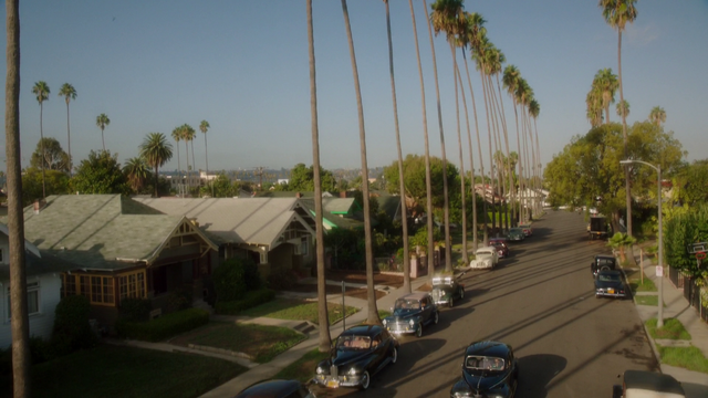 File:L.A Palm Trees (2x03).png