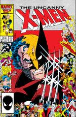 Uncanny X-Men Vol 1 211
