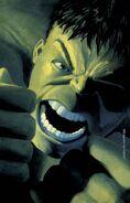 Hulk Nightmerica Vol 1 6 Textless
