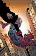 Amazing Spider-Man Vol 1 675 Textless