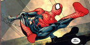 Spider-Man (Earth-58163) 001